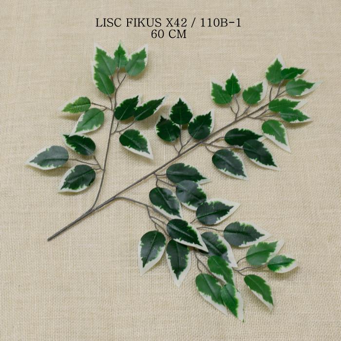 liście ozdobne