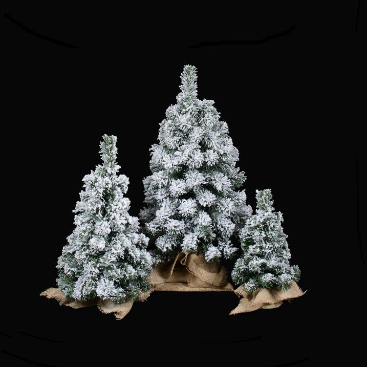 choinki śnieżone molkip